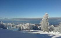 5 Gambarie-dalla neve al mare